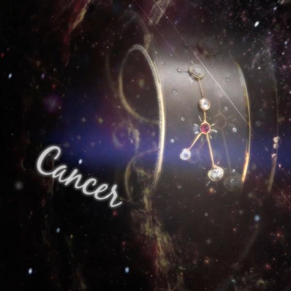 Constellation COLLECTION – PAYAL NEW YORK Dubai Videographer